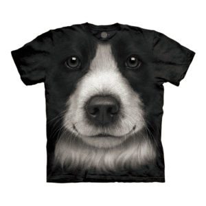 camiseta border collie patudinhos